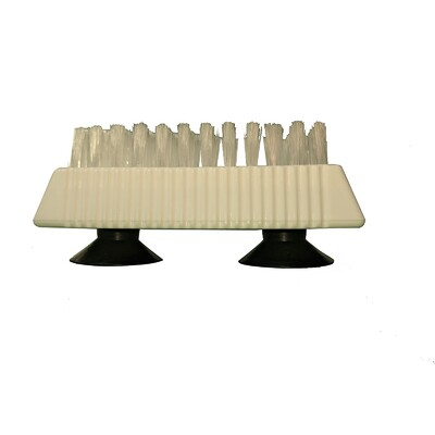 Nail/Denture Brush